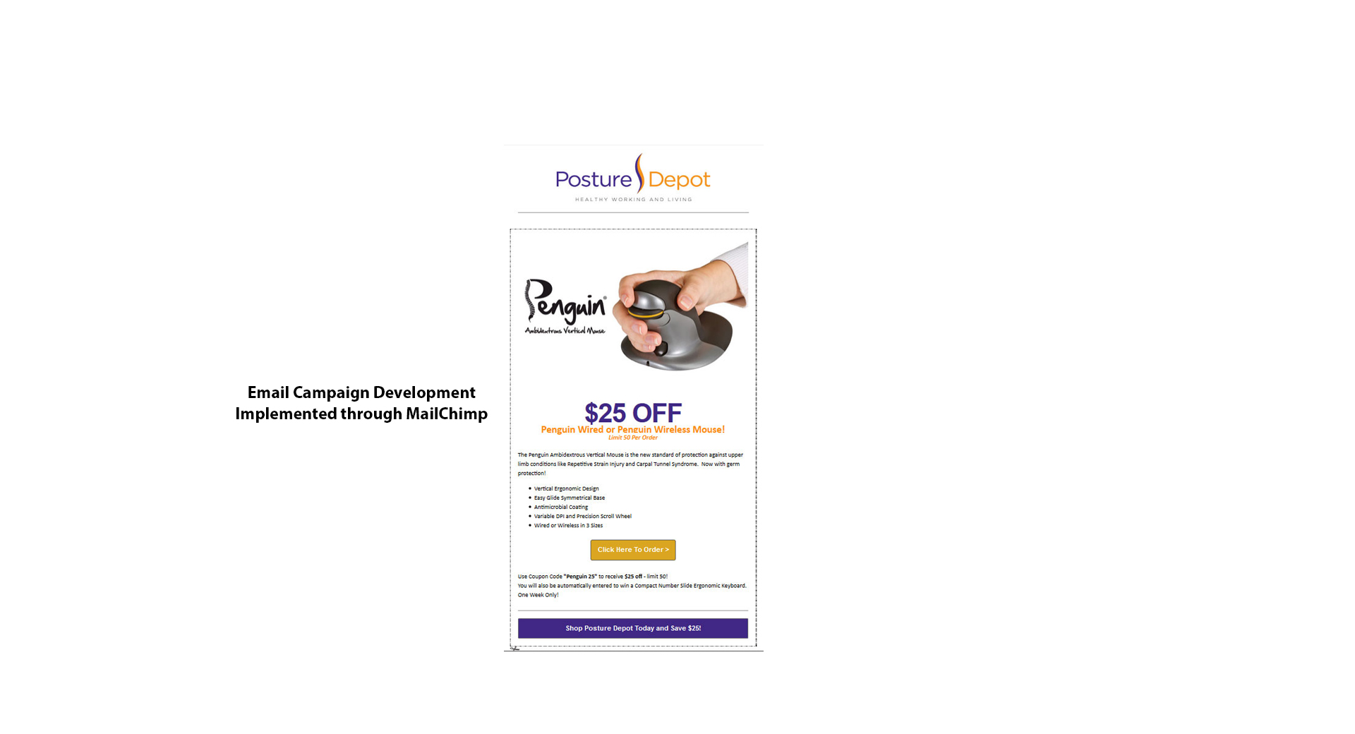 Email Marketing Campaign for Posture Depot